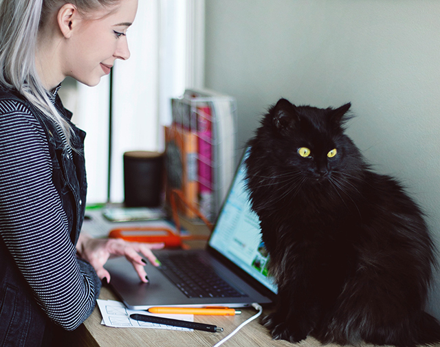 girls using lap top with cat